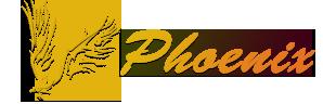 Веб студия Phoenix